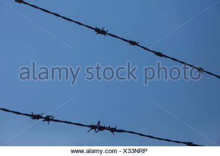 Barbed wire against blue sky, Germany - Stock Photo