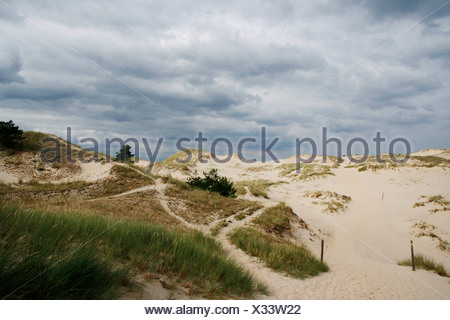 wandering dune at the Baltic Sea, Poland, Pomerania, Slowinski National Park, Czolpino - Stock Photo