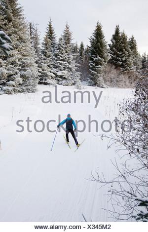 Woman Nordic skiing on the Baycrest Ski Trails in winter near Homer, Kenai Peninsula, Alaska - Stock Photo