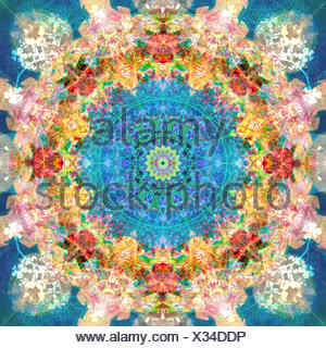 a mandala ornament from flower photographs, conceptual layer work - Stock Photo