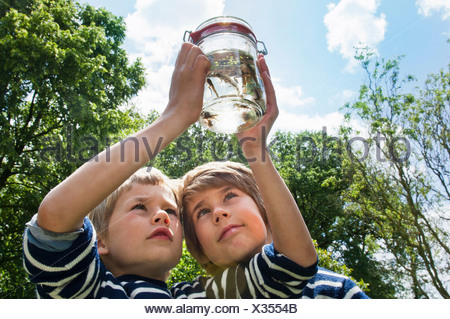 Two boys looking at tadpoles in jar - Stock Photo