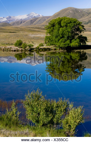 Water reflections of trees and mountains on a lake, Hakatere, South Island, New Zealand - Stock Photo