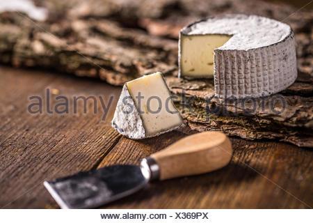 Fresh brie cheese - Stock Photo