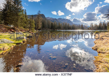 Europe, Italy, Trentino Alto Adige, Moena, Dolomites, the  alpine lake of San Pellegrino surrounded by a forest of firs and larches - Stock Photo