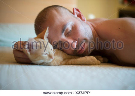 Man and kitten lying on bed, close-up - Stock Photo