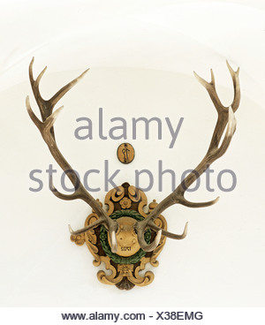 Deer antlers, trophy from 1702, 16 point antler - Stock Photo