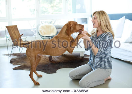 Woman playing with her dog at home - Stock Photo