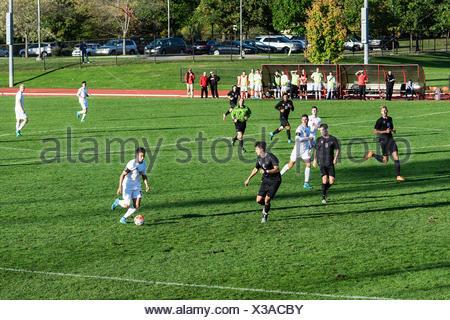 Harvard vs Cornell mens soccer game, Cornell University, Ithaca, New York, USA - Stock Photo