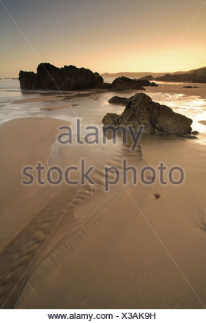 View of rocks on sandy beach at low tide, at sunrise, Whitsand Bay, Cornwall, England - Stock Photo