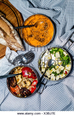 Roast veggies, carrot hummus, and tofu with herbs in steel lunch boxes on picnic blanket. Top view - Stock Photo