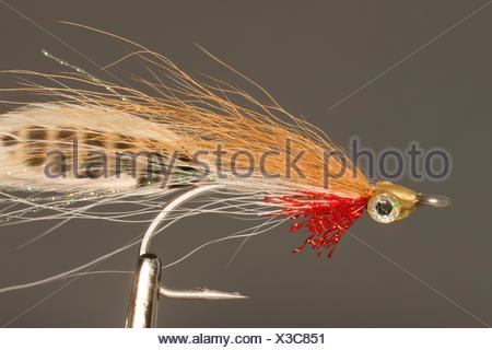 Steelhead streamer fishing fly. - Stock Photo