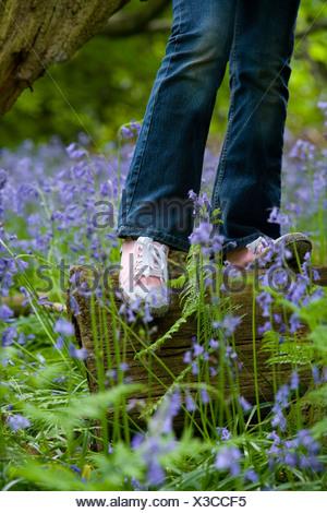 Girl balancing on log among bluebell flowers - Stock Photo