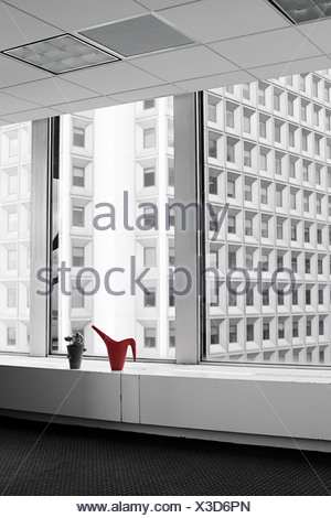 Watering can and plant on office windowsill - Stock Photo