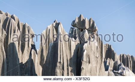 Close up of limestone rocks in the vicinity of Shilin - Stock Photo