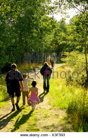 Rear view of a family on walk in the woods - Stock Photo