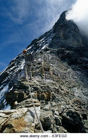 Climber descending hornli ridge on matterhorn - Stock Photo