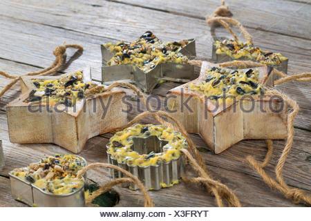 selbstgemachtes Vogelfutter wurde in sternfoermige Foermchen zum Aufhaengen gefuellt | self made birdseeds are filled in starsha - Stock Photo