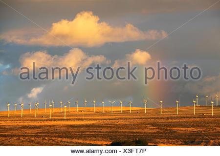 rainbow over the wind farm Costa Calma, Canary Islands, Fuerteventura - Stock Photo