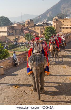 Tourists, ride, fort, Amber, elephant, Asia, India, elephant, Rajasthan, Amber, Jaipur, - Stock Photo
