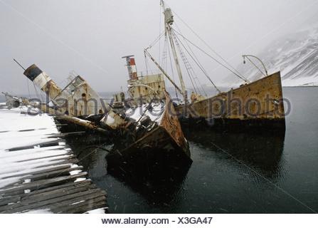 Grytviken South Georgia Island Antarctica Whale catcher boats sunk at moorings at Grytviken - Stock Photo