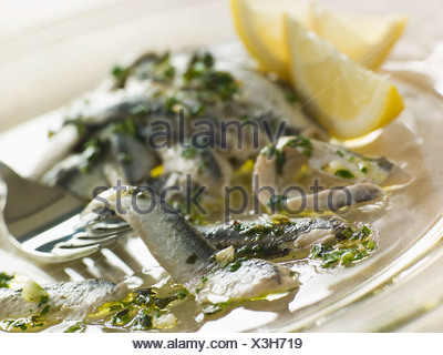Anchovies marinated in Herbs Garlic and Lemon - Stock Photo