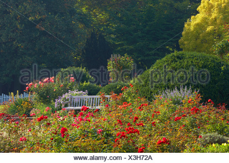Westfalenpark, Dortmund, Ruhrgebiet, North Rhine-Westphalia, Germany, Europe - Stock Photo