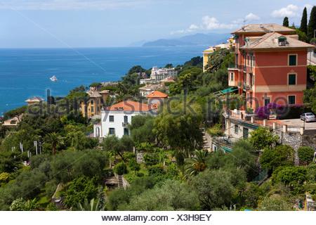 Houses above Santa Margherita Ligure, Genoa Province, Liguria, Italian Riviera or Riviera di Levante, Italy, Europe - Stock Photo