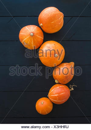 Ripe pumpkins over black rustic wooden backdrop, top view, copy space - Stock Photo