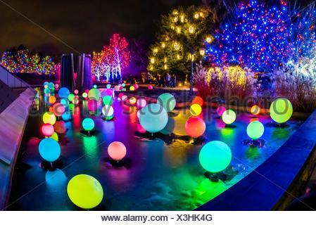 Blossoms Of Light One Million Lights Illuminating The Denver Stock Photo 94859481 Alamy