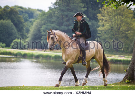 Frederiksborger with rider in historic costume trotting in the garden of Frederiksborg Palace - Stock Photo