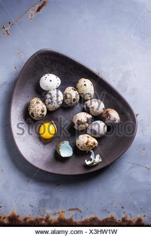 Quail eggs in brown ceramic plate over gray metal surface. Top view. - Stock Photo