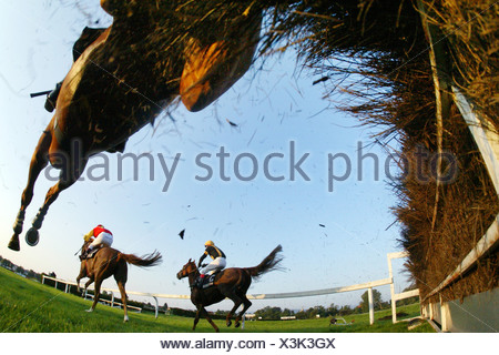 Iffezheim race horses with jockeys jump over the hurdle - Stock Photo