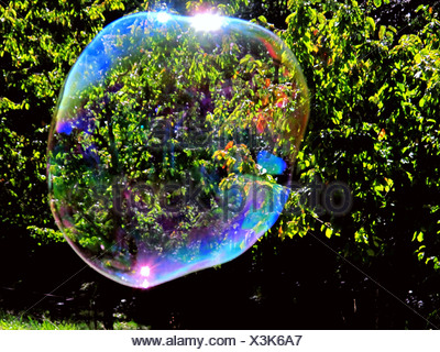 Soap bubble, bubble, colors, spectral colors, reflection, light, bushes, thicket, green - Stock Photo