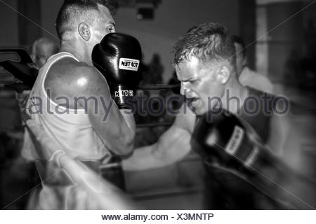 A low blow in a boxing match between two young men - Stock Photo