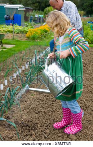 Girl watering vegetables in garden - Stock Photo