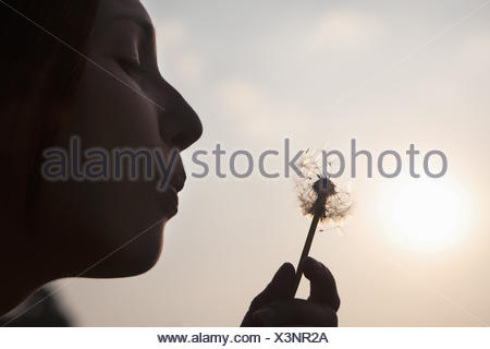 A young woman blowing a dandelion seedhead. Silhouette. - Stock Photo