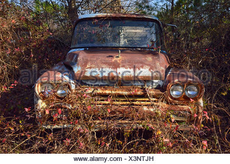 Abandoned rusty car in field - Stock Photo