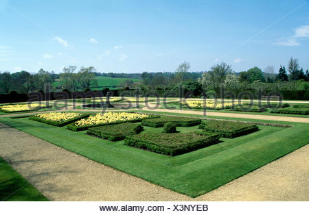 Box edged beds planted with pale yellow tulips in a large formal country garden in spring - Stock Photo