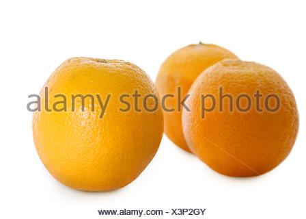 Oranges isolated on white background, three fruit object in studio. - Stock Photo