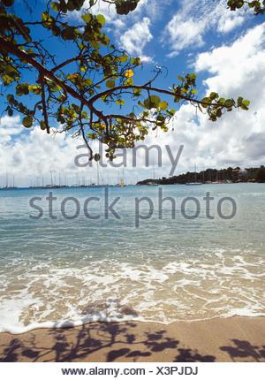 Calabash Hotel Beach - Stock Photo