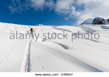 Skier breaks trail and leads rope team to climb Mount Torbert, Tordrillo Mountains in Southcentral Alaska - Stock Photo