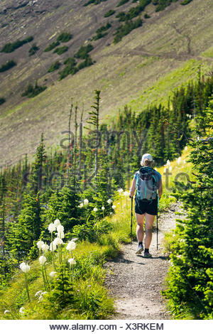 Female hiker on gravel trail along mountain side with wildflowers (beargrass) and hill side mountain trail in the background - Stock Photo