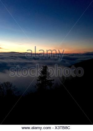 Silhouette Trees By Cloudscape On Field Against Sky During Sunset - Stock Photo