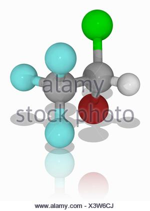 Halothane. Molecular model of the anaesthetic drug halothane (C2.H.Br.Cl.F3). This general anaesthetic is delivered by inhalation. It is also knowns as Fluothane. Atoms are represented as spheres and are colour-coded: carbon (grey), hydrogen (white), fluorine (cyan), bromine (brown) and chlorine (green). Illustration. - Stock Photo