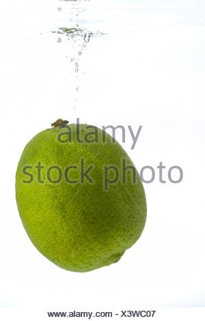 Lime fruit (Citrus × latifolia) falling into water - Stock Photo