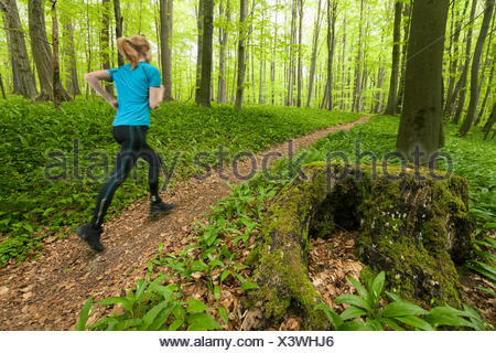 Young woman jogging through a beech forest, National Park Hainich, Thuringia, Germany - Stock Photo