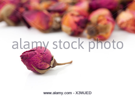 Close-up of a rose, Chinese Herbal Medicine - Stock Photo