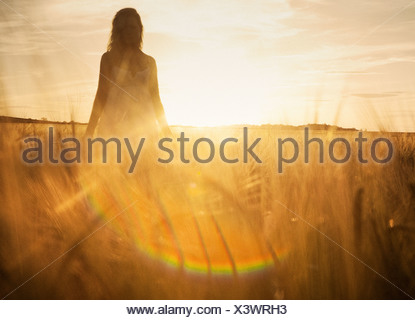 Young woman in barley field - Stock Photo