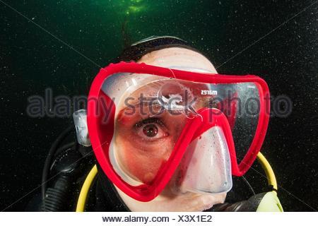 Scuba diver is watching a Craspedacusta sowerbii, freshwater jellyfish, phylum Cnidaria, invasive species. Lugano lake, Ticino, - Stock Photo