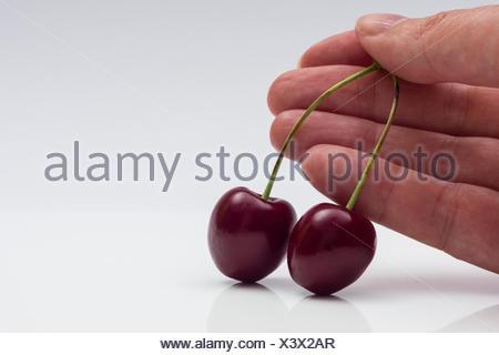 Kirschenpaar auf weißem Hintergrund mit Hand - Stock Photo